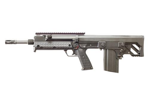 NAME THIS GUN. 10-10
