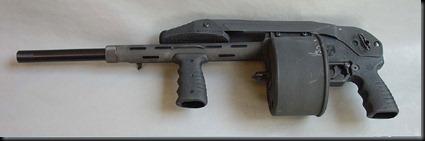 Shotgun (5)