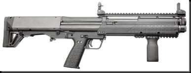 Shotgun (8)
