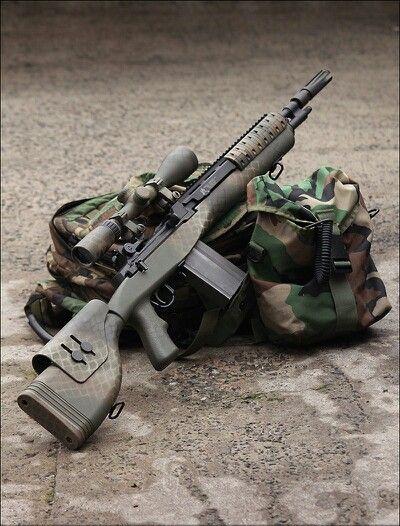 Aaron- Springfield M14 Gun Of The Day