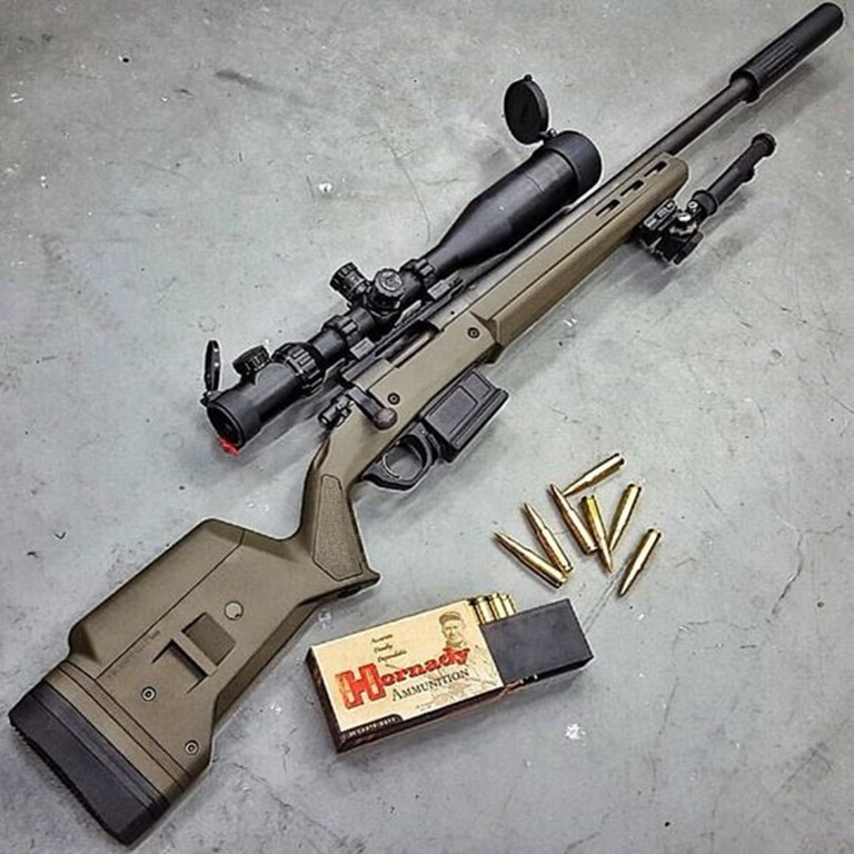 Rem 700 in Magpul Stock