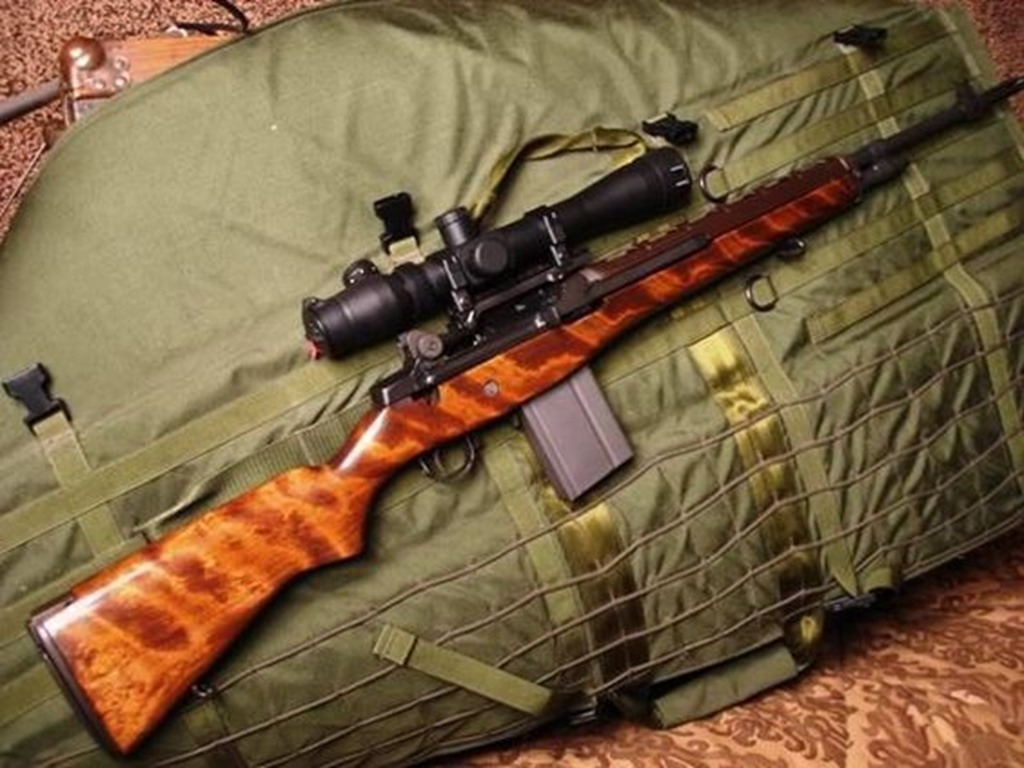 Springfield M1A with Wood Stock